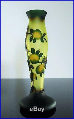 Art Nouveau Ancienne Vase Pte De Verre Dégagé L'acide Daum Galle Vianne Signe