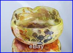 Daum Nancy Coupe Décor aux Mûres Verre Gravé Émaillé Art Nouveau vase gallé